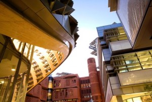 Inside Masdar City