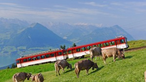 Do you feel inclined to walk? Steep times on the Rigi