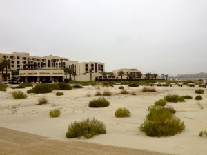 Park Hyatt Abu Dhabi and turtle nesting zone