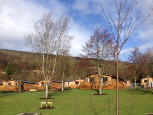 Cheddar Woods Holiday Home Park, Somerset